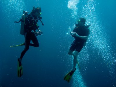PADI Open Water Diver en Gandía