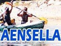 Aensella