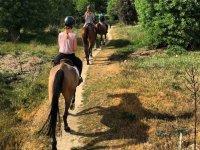 Ponys para niños en Villafranca del Castillo