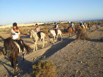 1 ora a cavallo a Las Ramblas. Acqua Amara