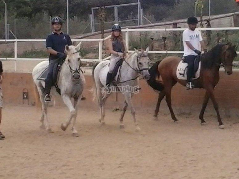 grupo de curso de equitacion