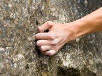 Agarrado fuertemente a la roca