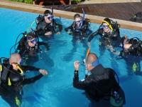 泳池潜水的说明