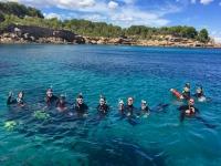 在表面上的潜水队