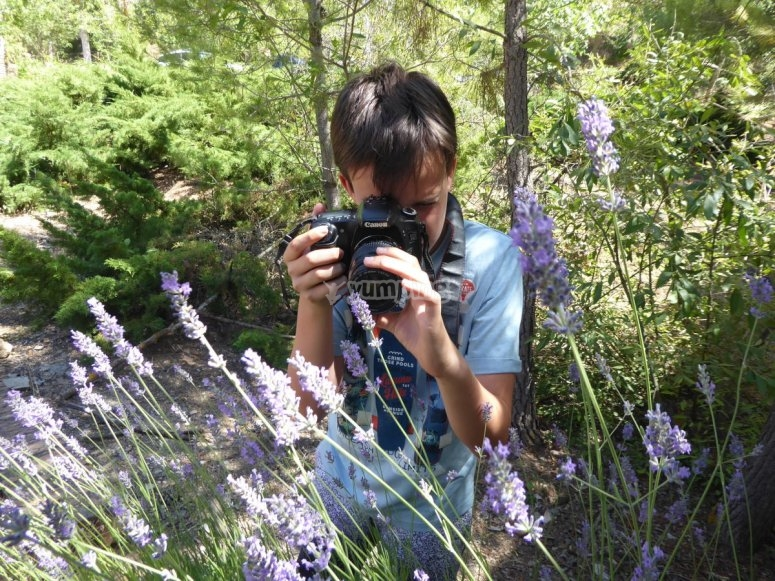 Curso de fotografía al aire libre