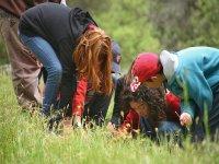 Explorando el entorno de la granja escuela