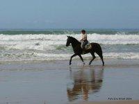 Montando a caballo junto al mar