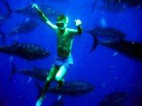 Bagno con tonni giganti