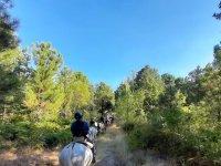 A caballo por caminos de Gredos