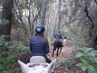 A caballo por Gredos