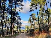 Rutas a caballo en la Sierra de Gredos