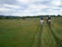 Ruta ecuestre por el campo