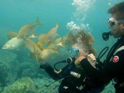 PADI Discover Scuba Diving en playa, Puerto Rico