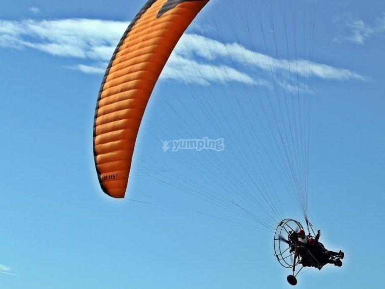 专业人员的动力伞