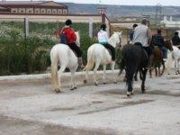 On horseback between the wineries