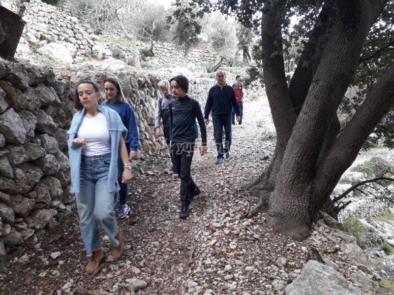Excursion through the Biniaraix canyon