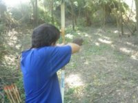 Disparando a los arboles