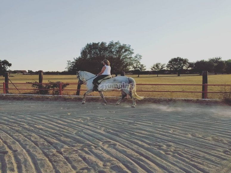 Aprendiendo técnicas de equitación