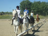 Horse Riding Initiation Course in Escorial
