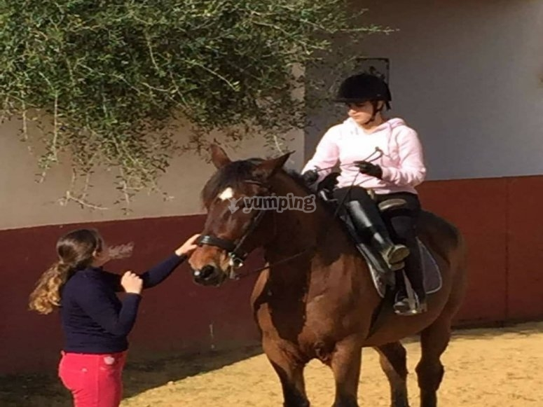 Private horse riding course