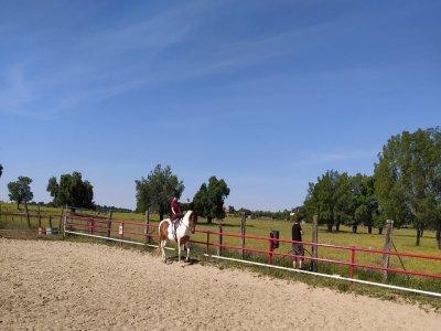 Clase Particular Equitación en El Escorial 45 min