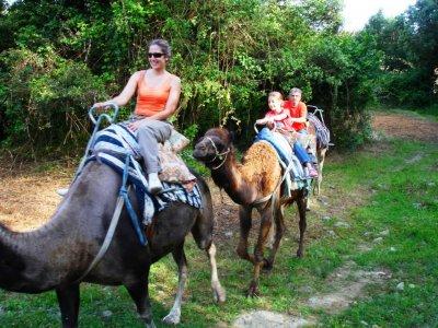 1 hora de paseo en dromedario en Noja. Niños
