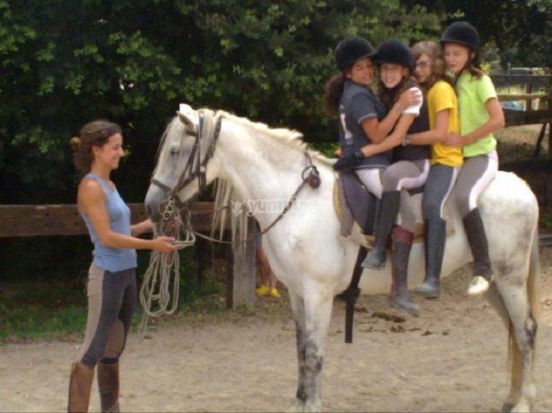 孩子们玩马