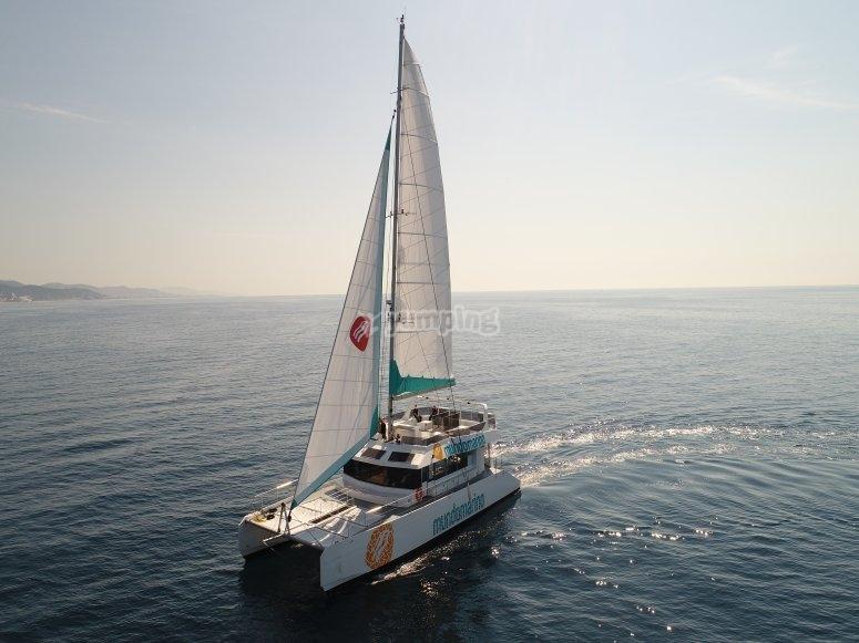 Actividad en catamarán