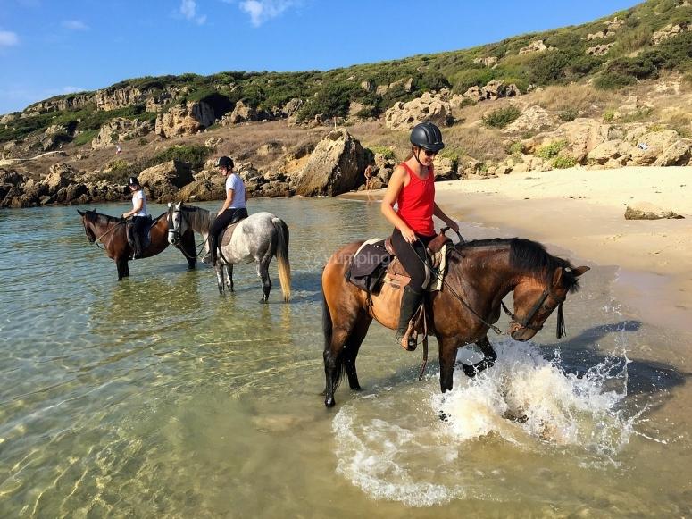 塔里法海滩上的骑马
