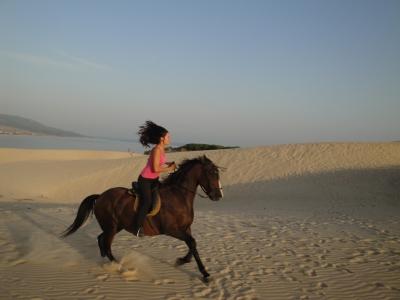 Paseo a caballo y puesta de sol, playa Bolonia