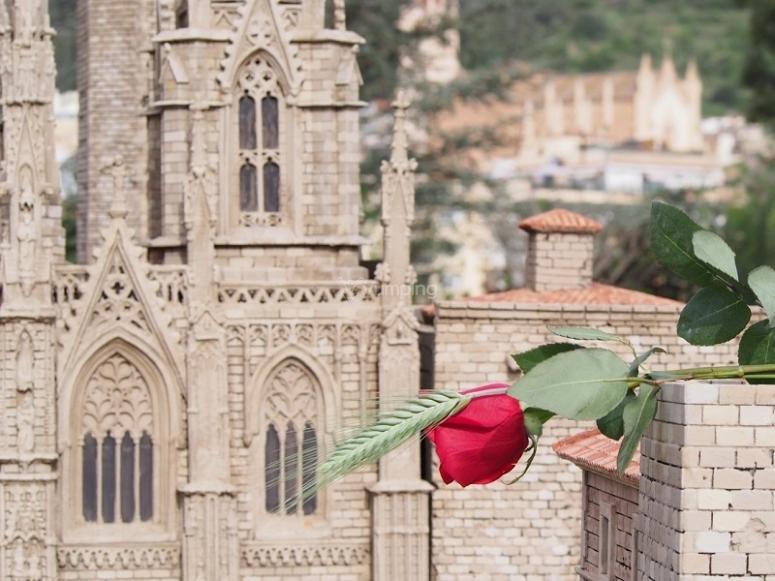 Rosa de San Jorge