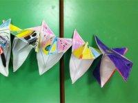 Papillon colorati