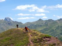 Caminando en los Pirineos