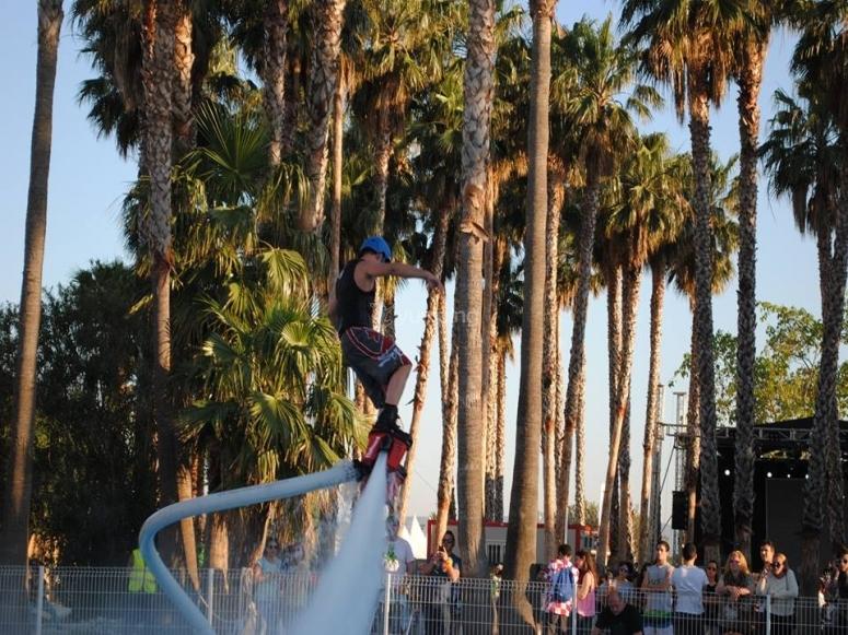 棕榈树旁边的flyboard