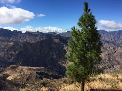 Ruta Camino a Artenara: la ruta de los 100 Valles