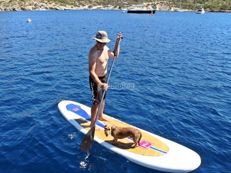 Prácticando el paddle surf