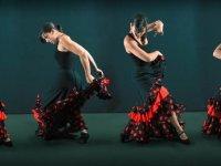 Bailaora de flamenco con vestido negro