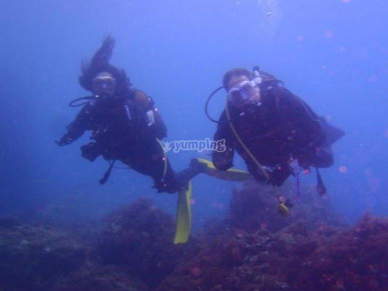 潜水作为一对夫妇