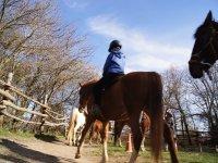 Pequeño a caballo por la pista exterior