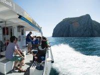 Paseo en barco recorriendo la costa