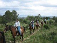 Route through Mallorca