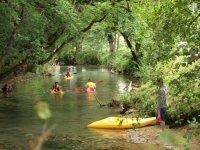 Piraguas en el rio bajo los arboles
