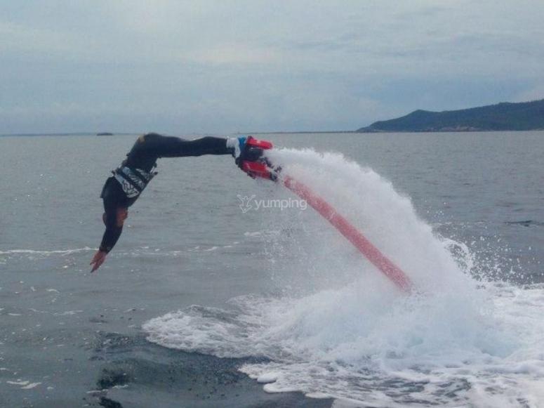 海豚跳跃由水推动