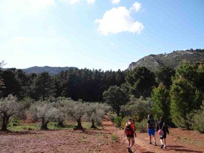Trekking route Costa del Sol