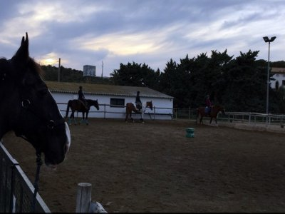 骑马+ La Granja马术表演