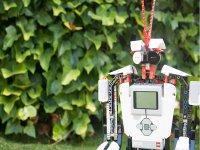 Mil opciones con la robotica