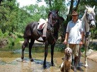 托莱多羊肠小道骑马