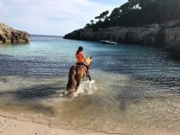Entering with the horse in the Balearic sea