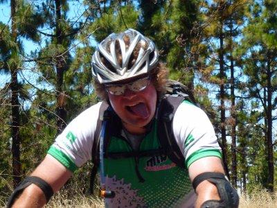自行车路线穿过泰德山的巨大森林