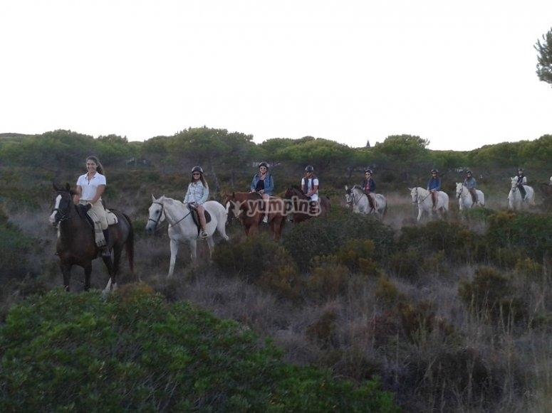 Ride a horse in Conil
